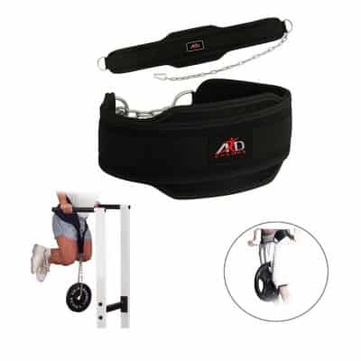 ARD-Champs Neoprene weighted dips