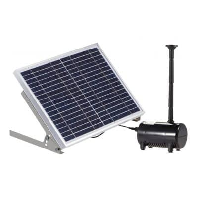 Lewisia Solar Water Pump