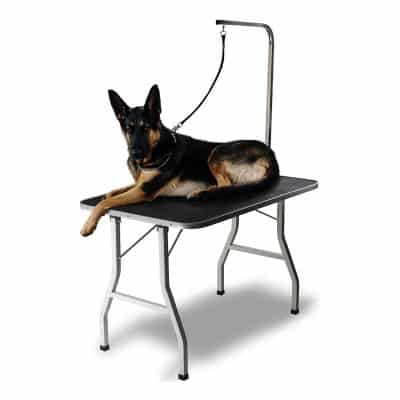 Paws & Pals Professional Portable Grooming Table for Dogs