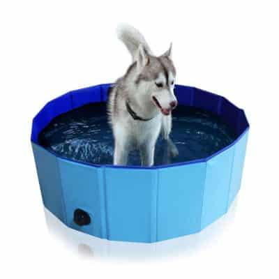 Dono Foldable Pet Bath Tub PVC Swimming Tub
