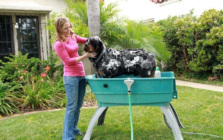 Dog Bath Tub