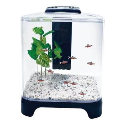 Penn Plax 1.5 Gallon LED Betta Aquarium Kit Fish Tank with Internal Filter