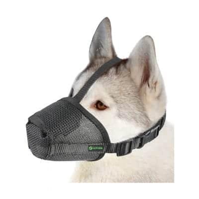 Dog Muzzle Mesh Mask