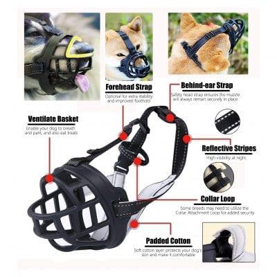 Dog Muzzle, Basket Muzzles