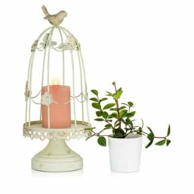Sziqiqi Antique Decorative Bird Cage